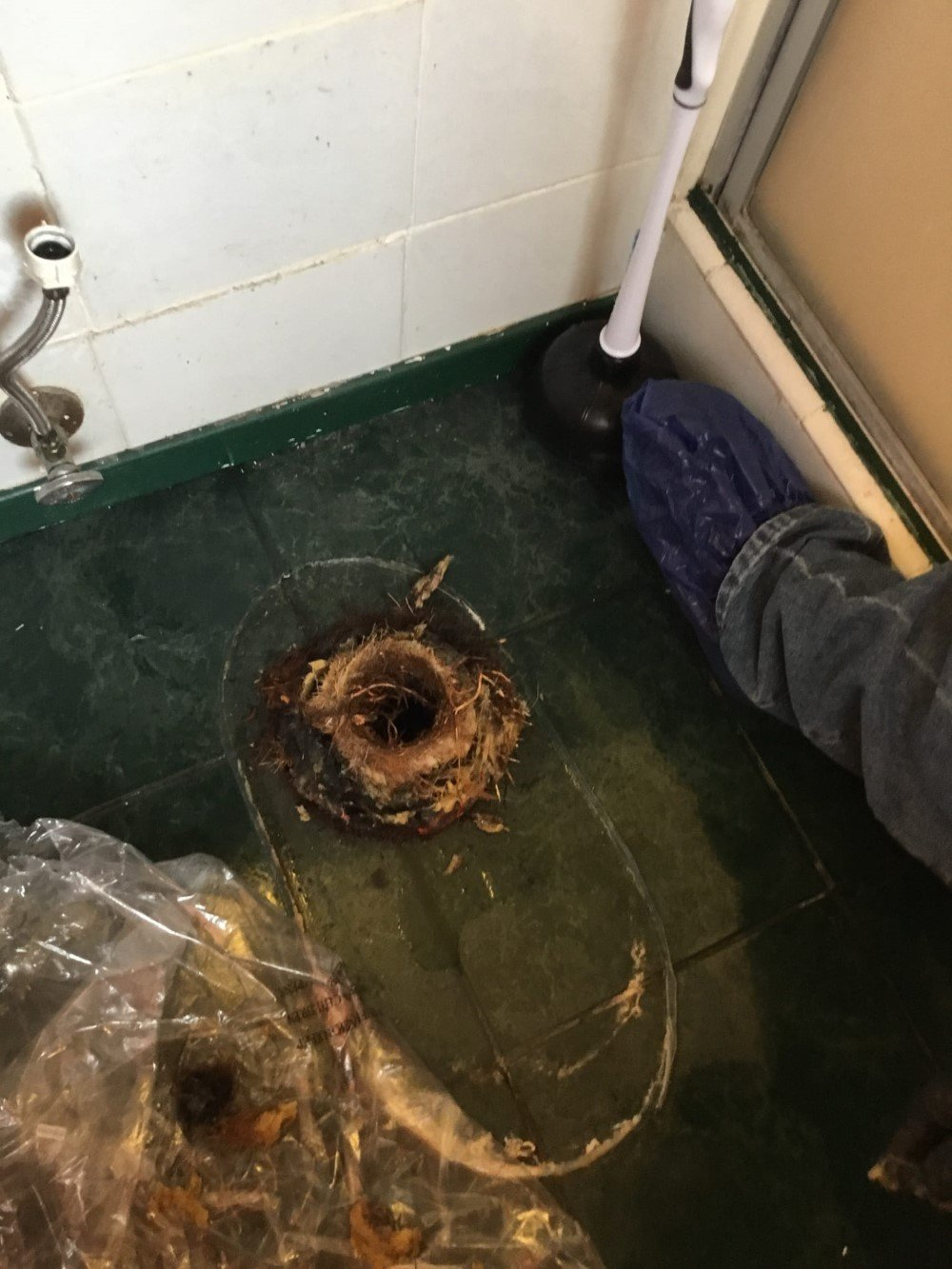 Clogged Toilet in Tracy, CA
